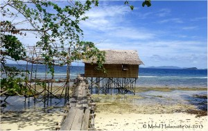 The hut we're stying at in Waigeo, managed by the village.